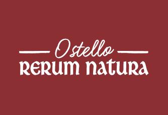 rerum-logo