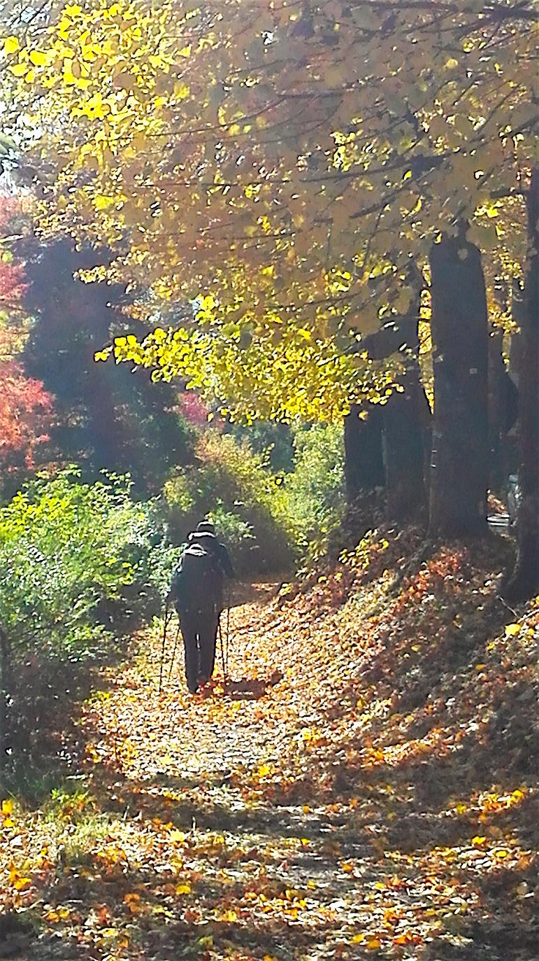 autunno a Rieti